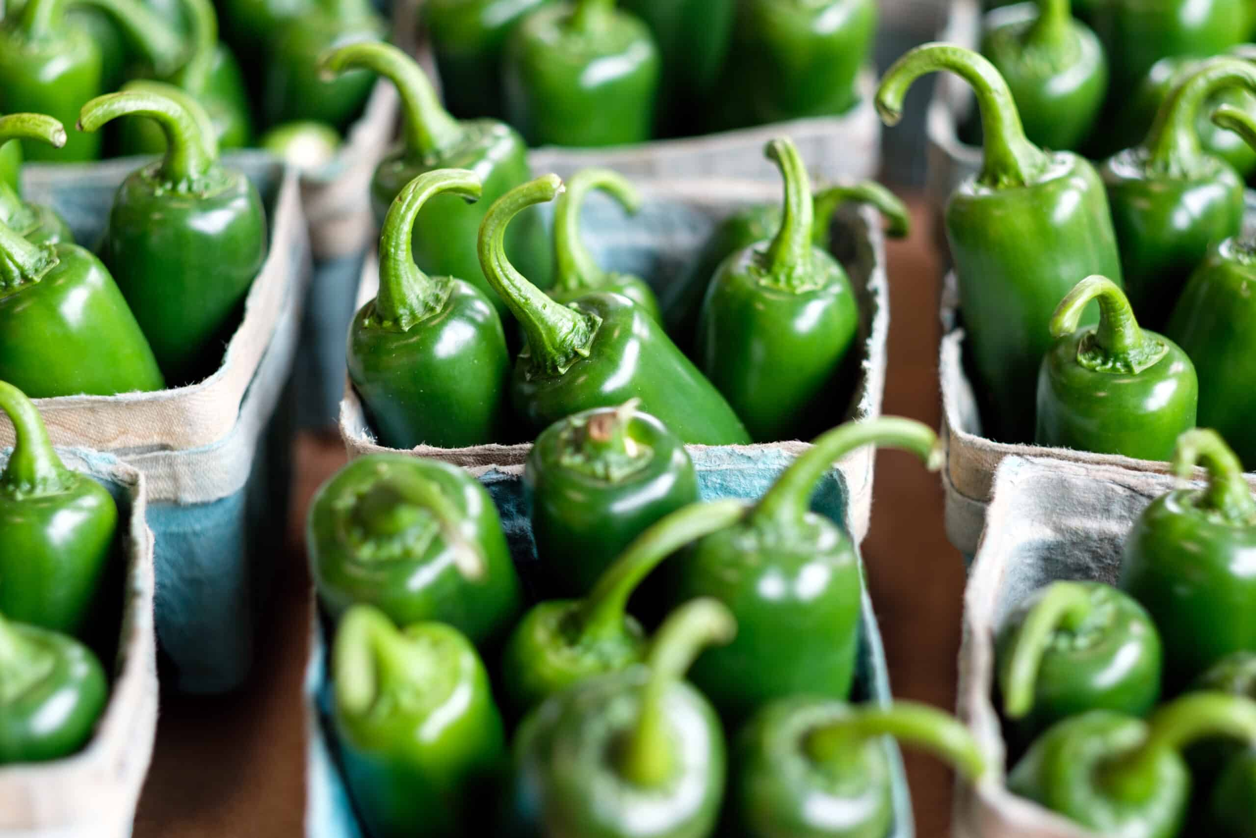 jalapeno peppers from store in baskets