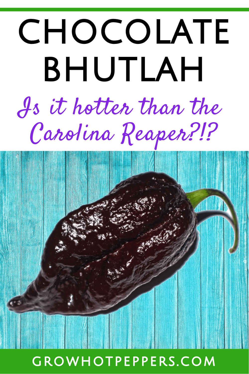 Chocolate Bhutlah: Is it Hotter Than the Carolina Reaper?