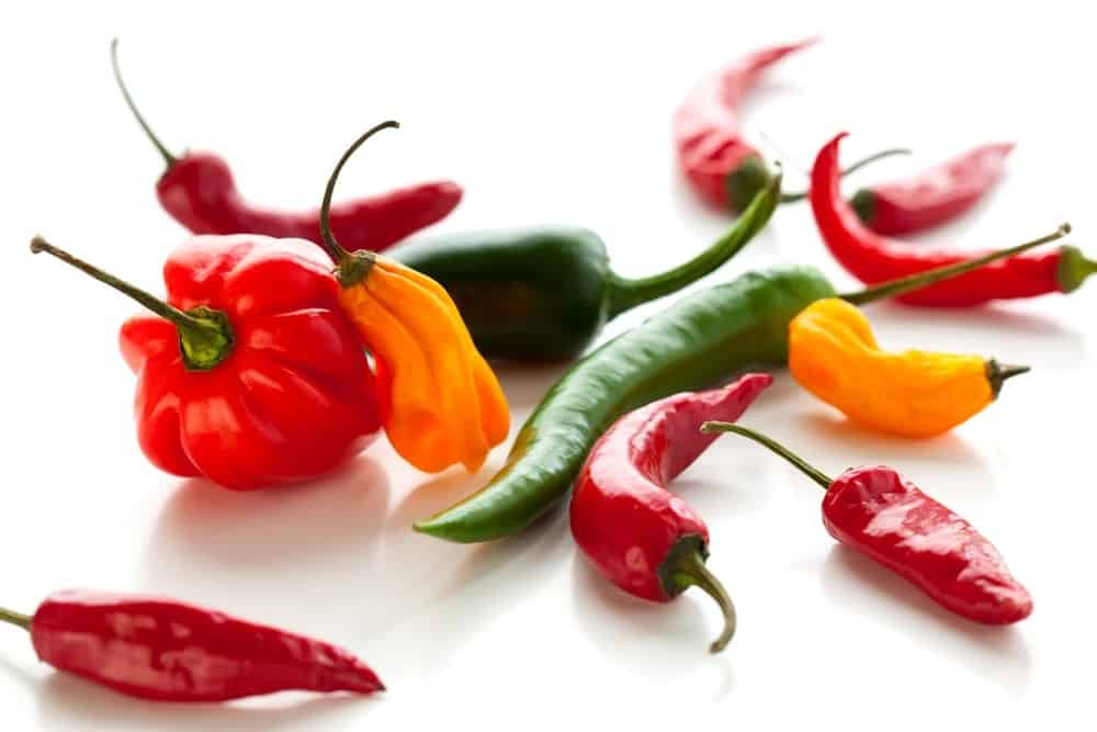 types of chili peppers