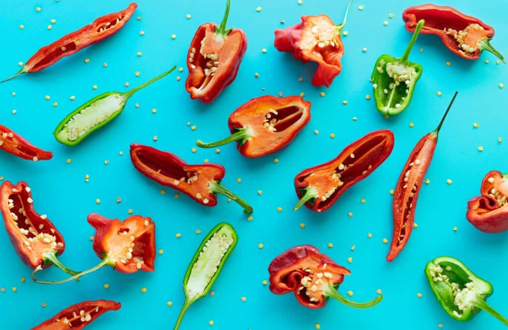 harvesting pepper seeds