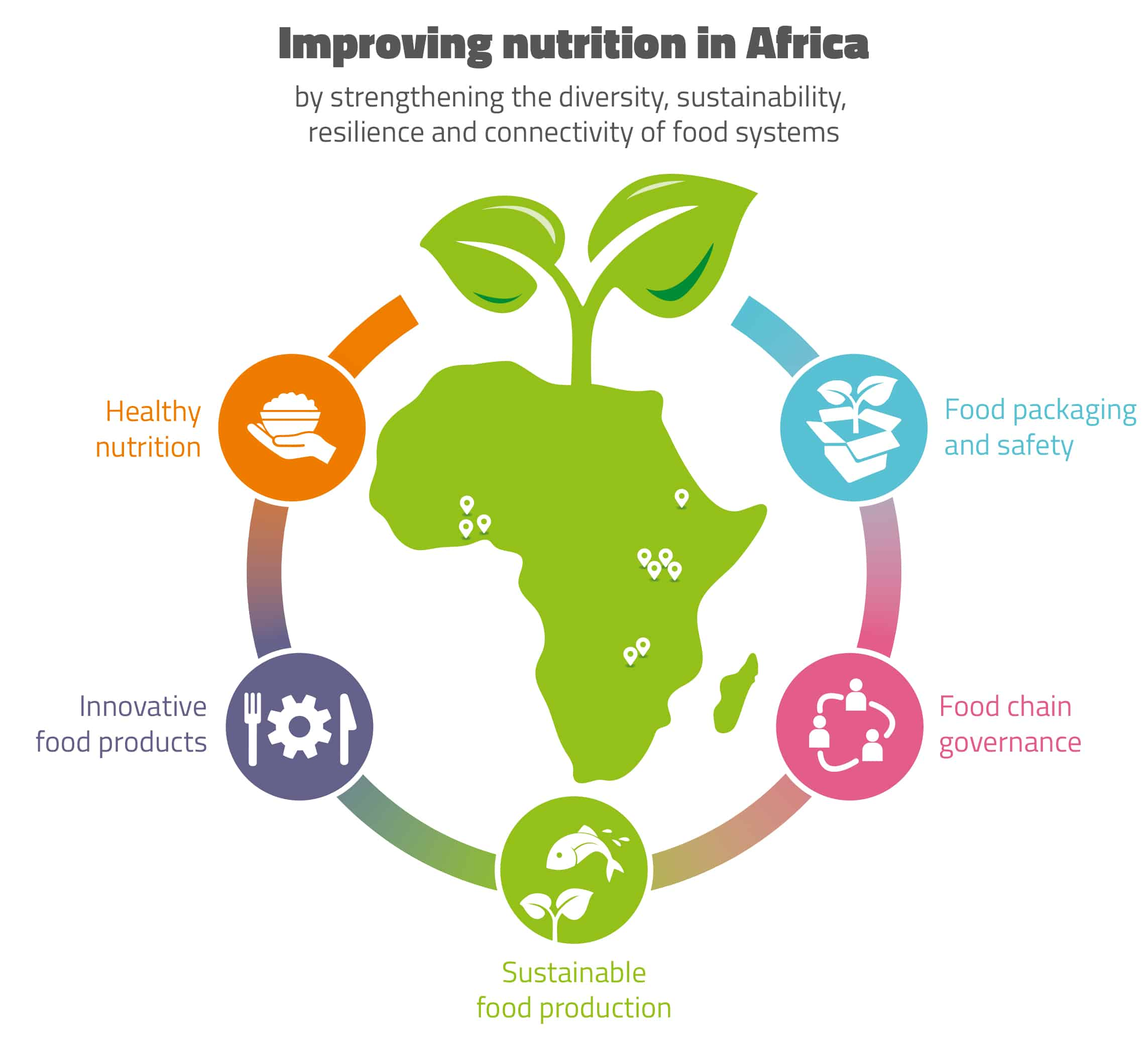 Visualisation of HealthyFoodAfrica project's thematic focus areas and Food System Labs.