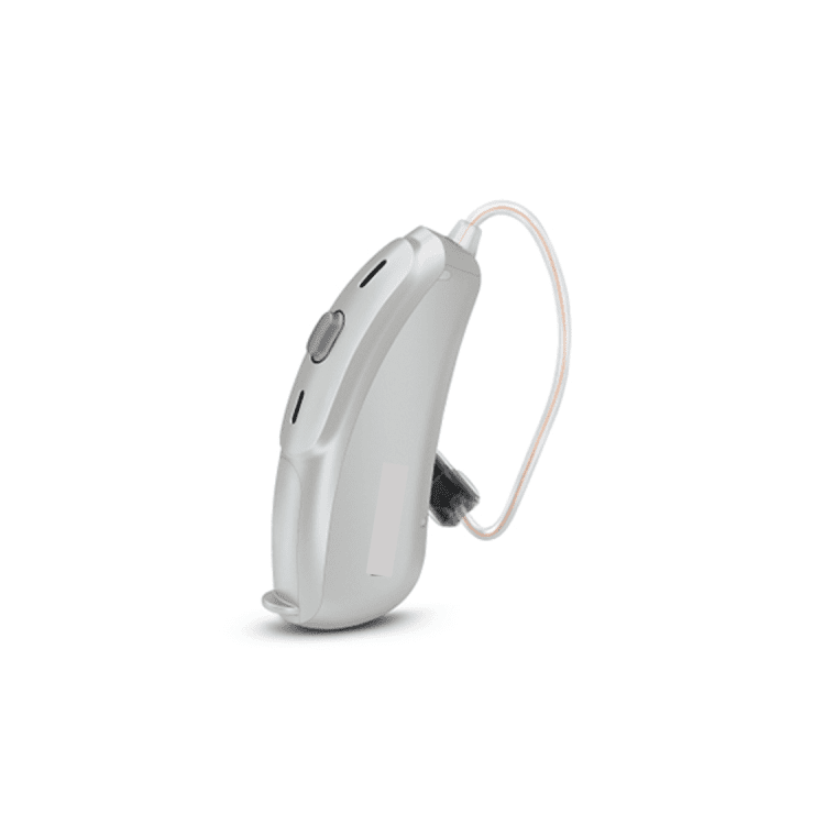 RIC receiver in the ear hearing aid