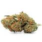 Order weed online Buy Agent Orange