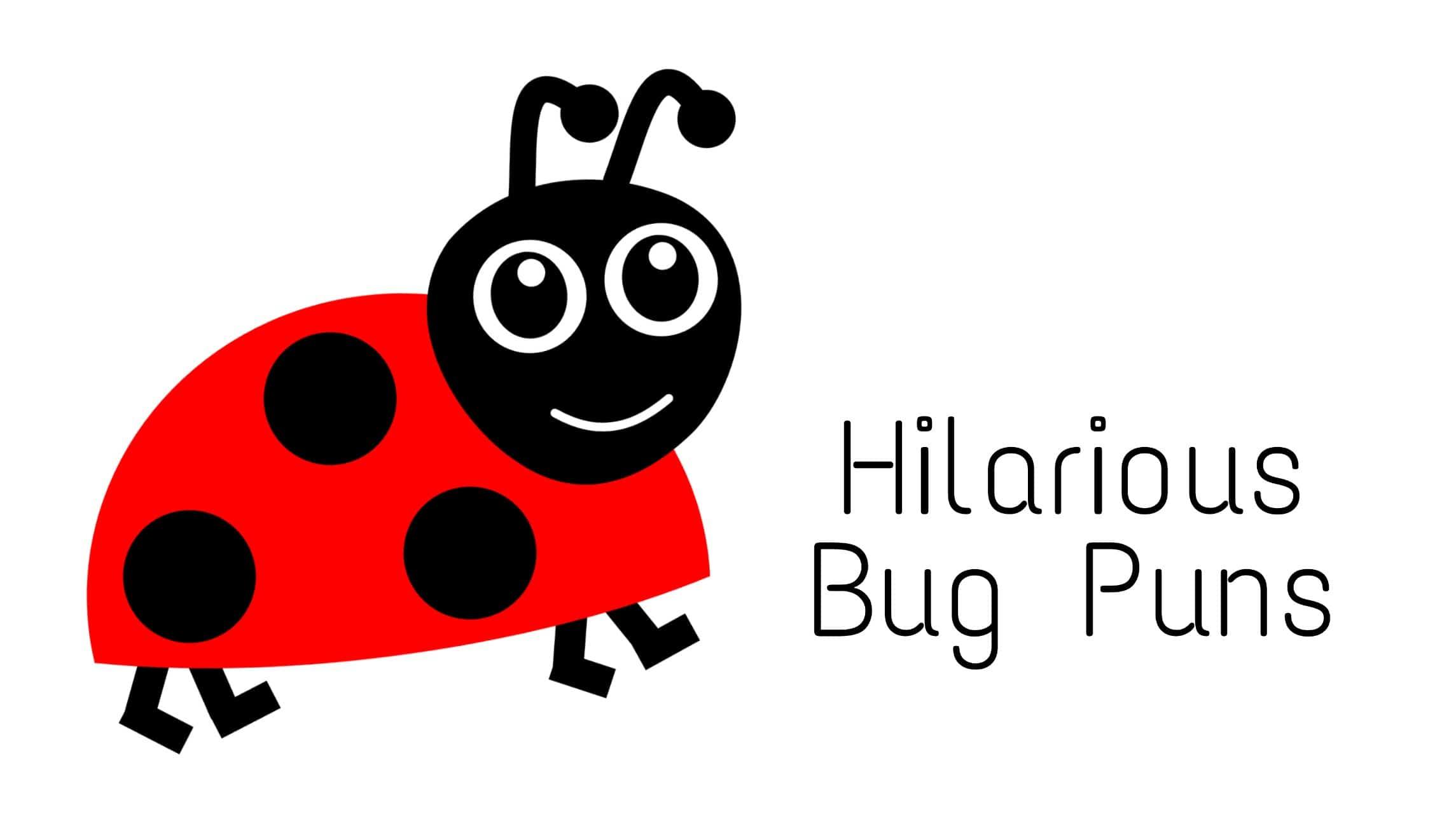 funny bug puns