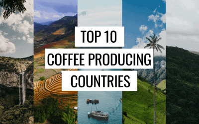Where in The World is Coffee Produced?