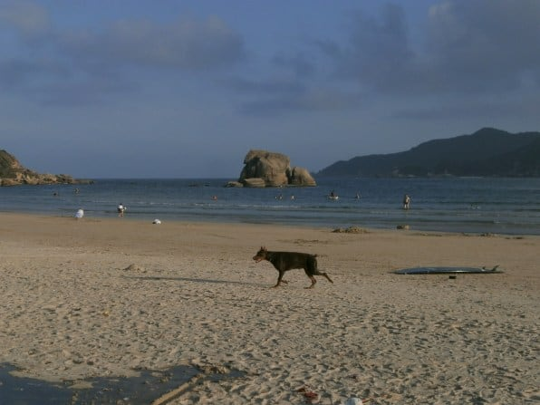 P2010185 - Las playas de Hainan: Viaje a Haikou y Sanya