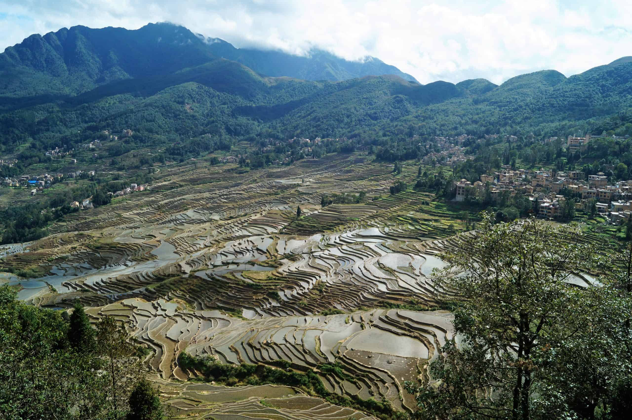 Yunnan Arrozales de Yuanyang scaled - Trip to Yunnan: 12 days in China with all included!
