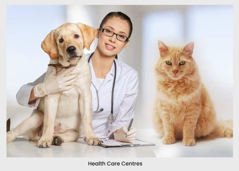 animal health care centre doctor dog cat pet  | pet business idea 31+ Profitable & Unique Pet Business Ideas For 2021