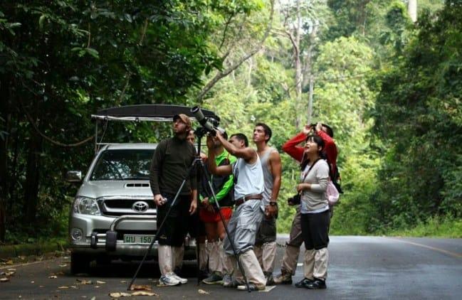 Tailandia Parque Nacional de Khao Yai 1 500x325 - 2 days in Khao Yai National Park: a life experience