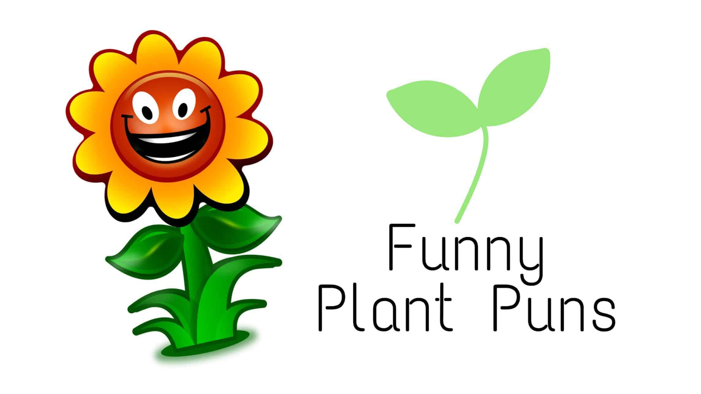 funny plant puns