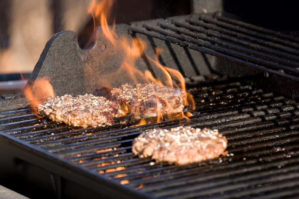 Factors To Consider Before Purchasing A Grill: Type of Food