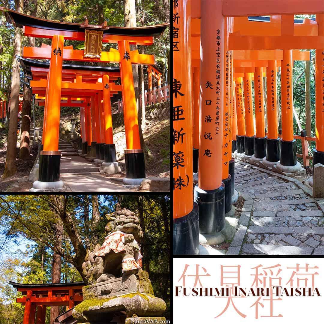 Fushimi Inari Taisha (shrine)