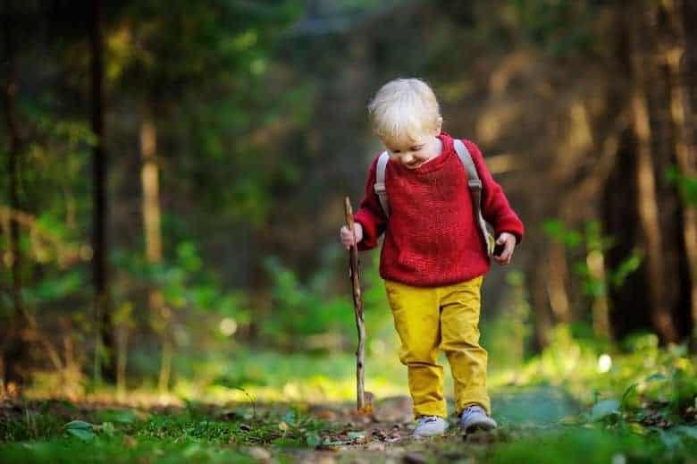 activities to do on nature walks