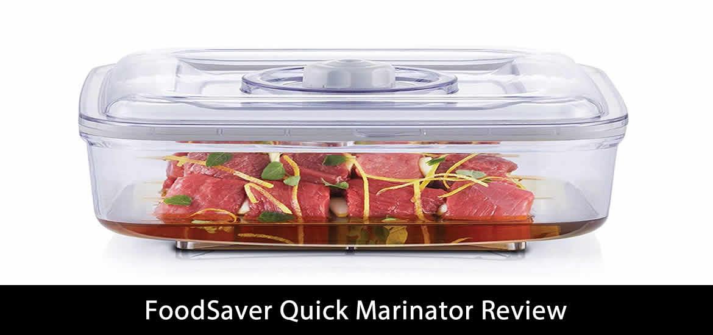 FoodSaver Quick Marinator Review