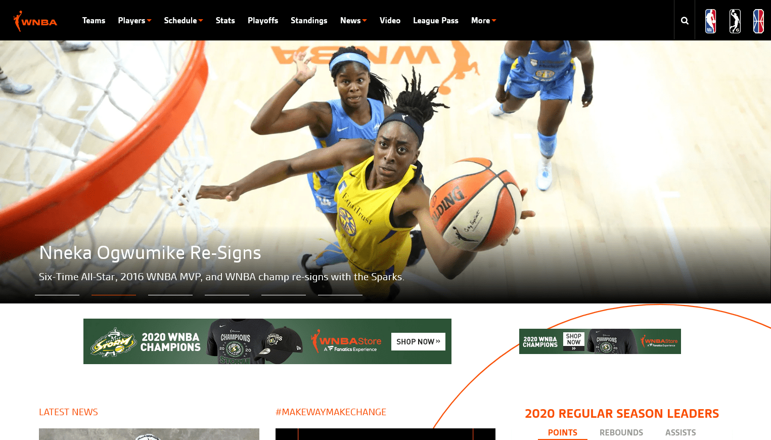 Women's National Basketball Association (WNBA)