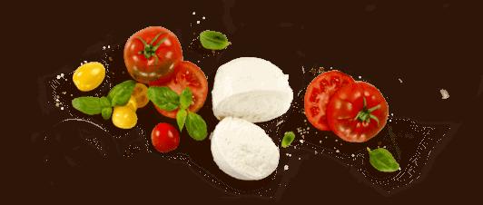 tomato mozzarella antipasti