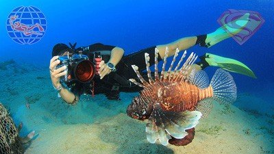 PADI specialty courses in Phuket