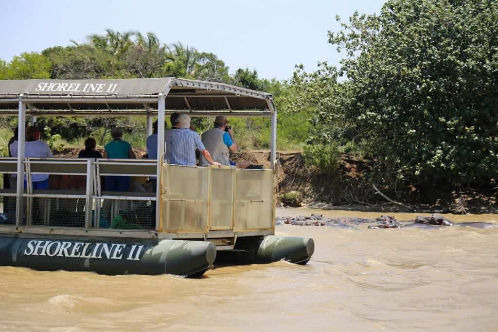 A boat with tourists on it floats near a pod of hippos