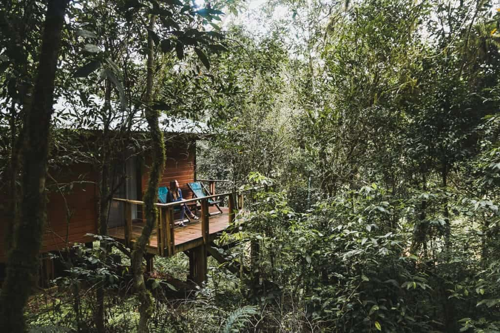 A woman sitting in a green chair on a deck in the middle of a jungle