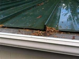 ROOF GUTTERS WITH DEBRIS