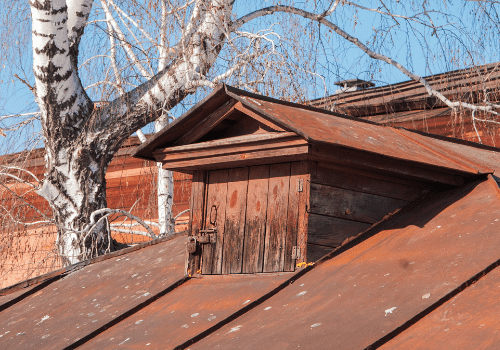 roof with critter from tree
