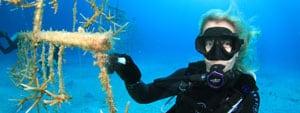 PADI underwater naturalist specialty course phuket
