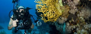PADI Underwater Photography Specialty Phuket