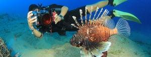 Phuket dive courses
