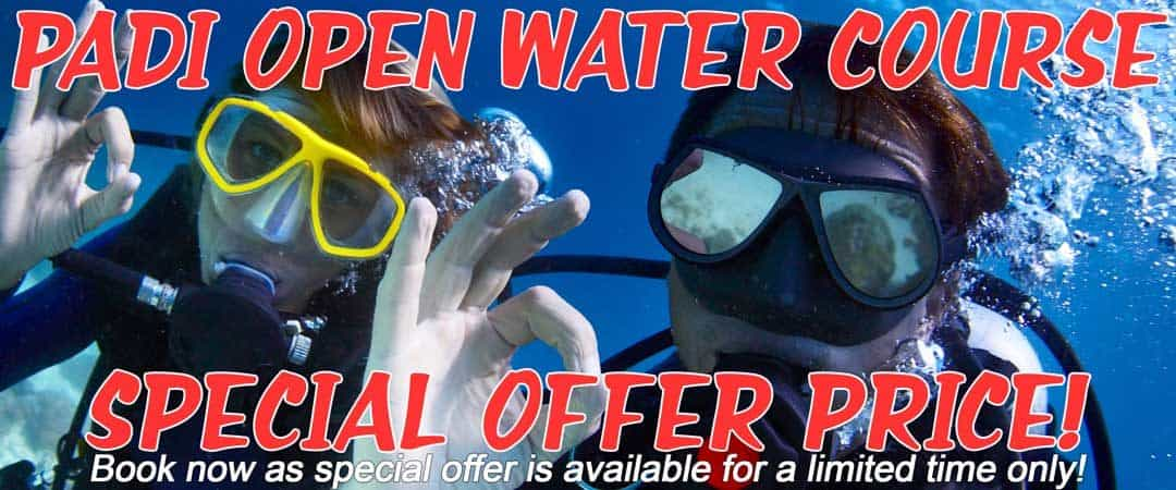 Phuket Dive Courses Special Offer