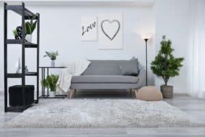 Flat Rug in Living Room