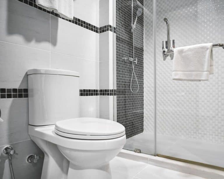 Best One Piece Toilets