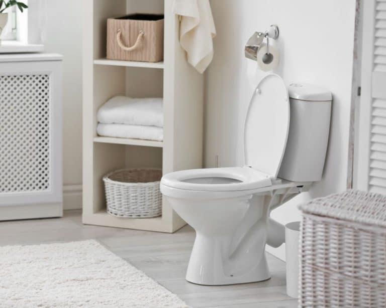 Best Rear Discharge Toilet Reviews