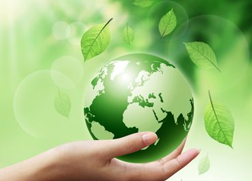 IELTS Speaking Questions About the Environment