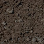 Boron deficiency in soil threats for crops and environment