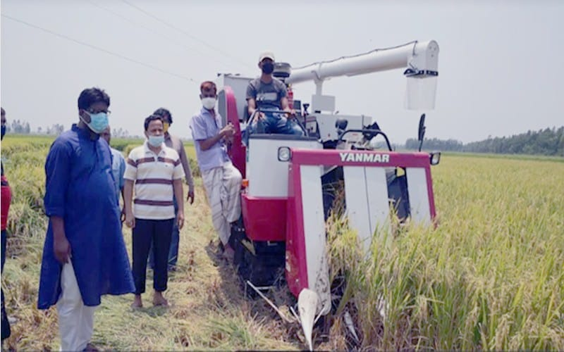 Combine Harvester for Reaping Paddy - Bangladesh Govt. offers 50% subsidies among the Farmers