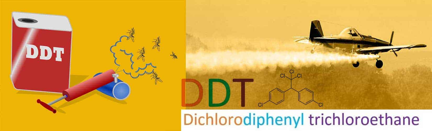 What is DDT And Why has its use been banned