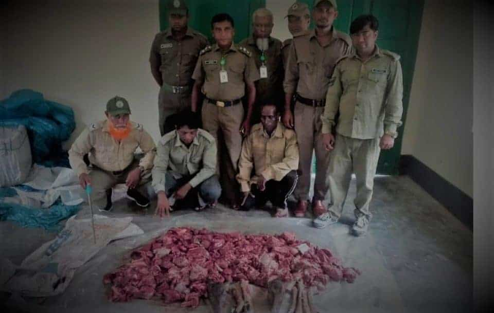 A smuggler with deer meat arrested from the Sundarbans