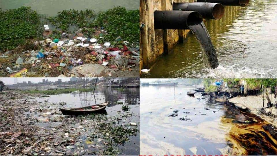The Padma pollution is increasing with the dumping of solid and liquid waste