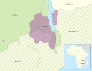 चेवा भाषा Chewa language