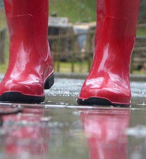 Best Wellington Boots For Women