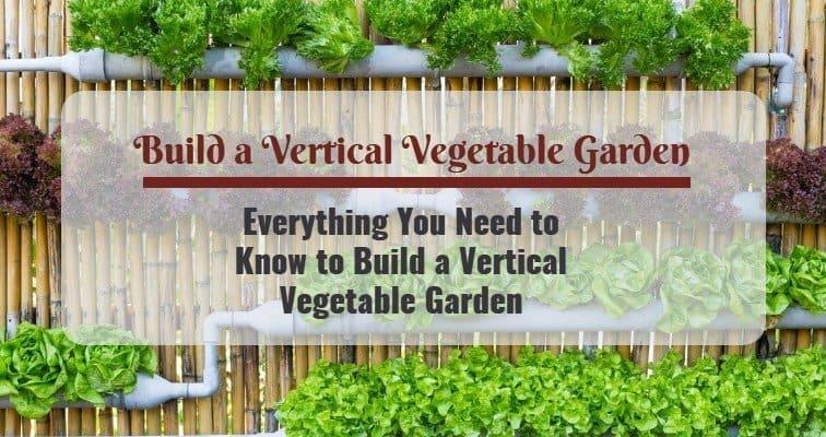 How to Build a Vertical Vegetable Garden?