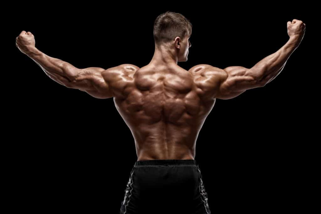 fit young male showing his developed back muscles from using a free standing pull up bar stand