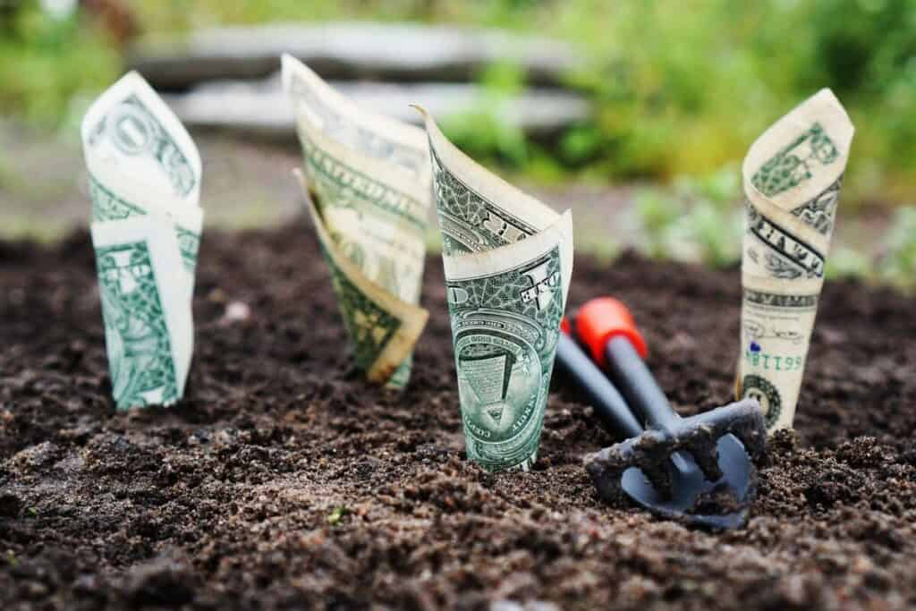 Dollar bills rolled up in the ground acting as if they are being grown in a garden