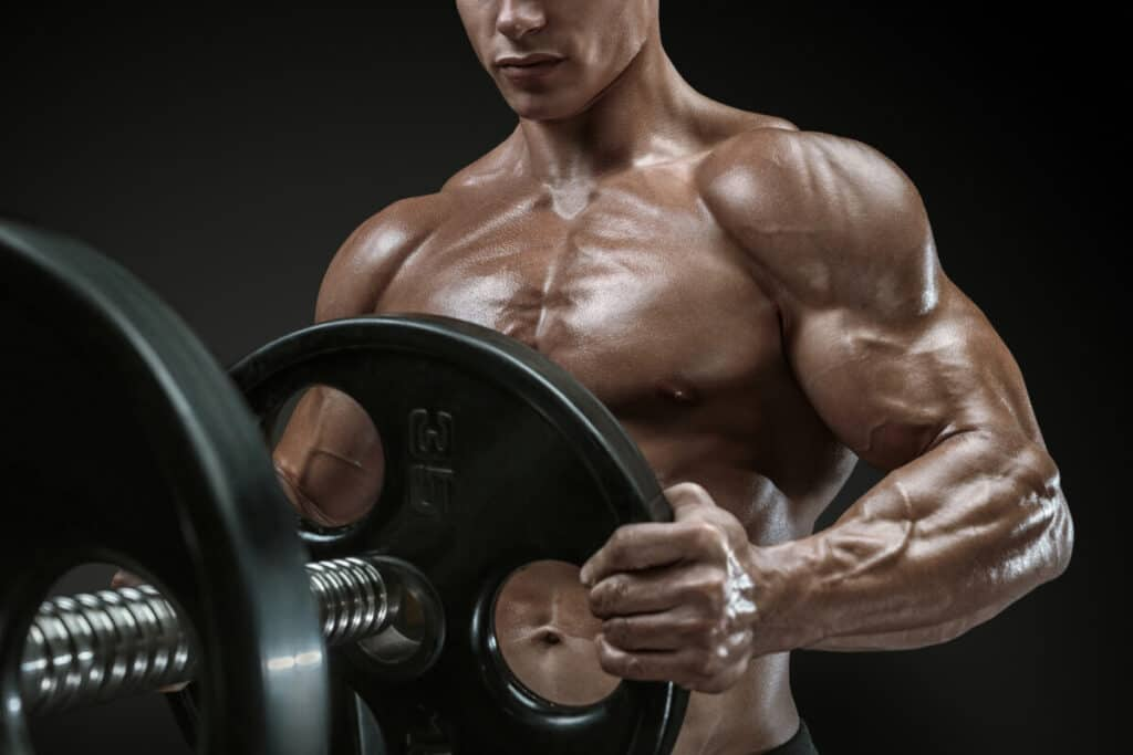 Closeup photo of handsome bodybuilder guy prepare to use d bal max to exercises with barbell in a gym, keep barbell plate in hands