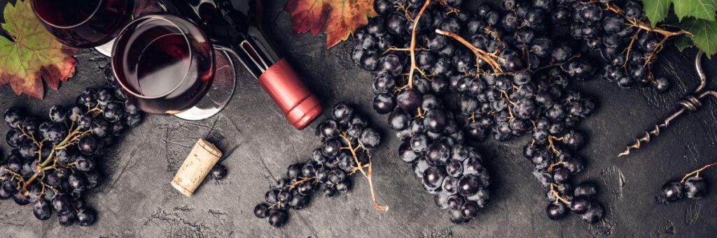 Bordeaux capital du vin