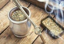 Boire un thé maté à Bordeaux