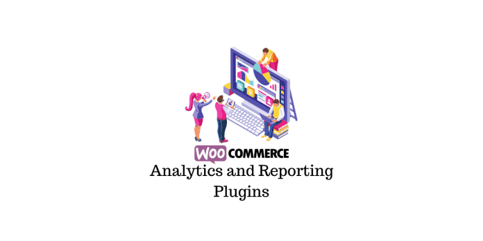 Plugins de reporting et d'analyse WooCommerce