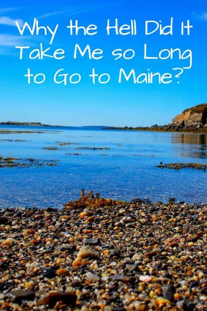 Why you need to go to Maine right now