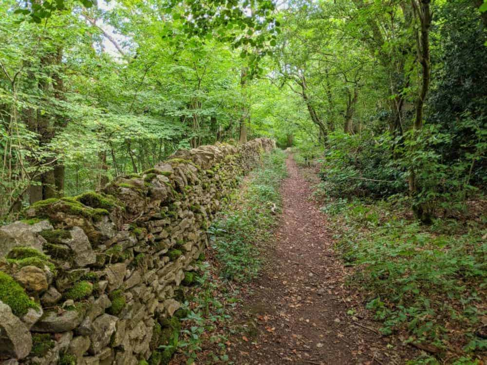 Trail beside a stone wall, Cotswold Way