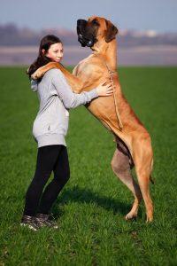 girl holding her dog